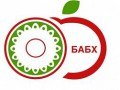 BABH-Logo